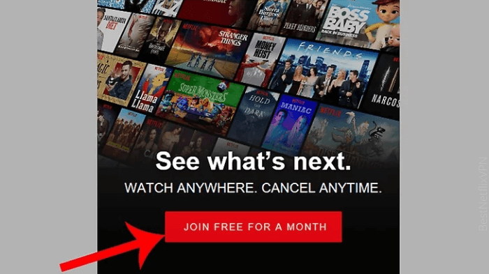 is it possible to get netflix for free
